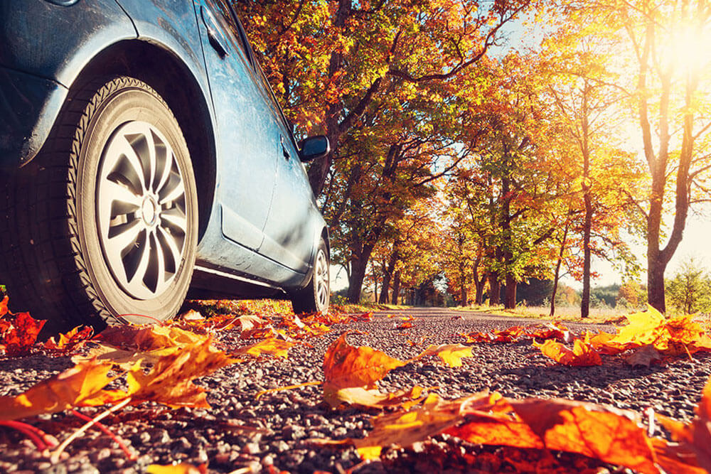 Does My Vehicle Need Fall Maintenance?